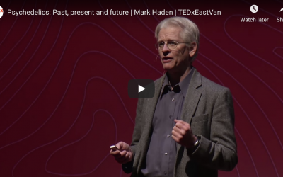 Psychedelics: Past, present and future – Mark Haden