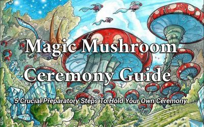 Magic Mushroom Ceremony Guide | 5 Crucial Steps To Hold Your Own Ceremony